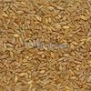 560mt ASW1 Wheat For Sale TT or FOT ex Mitiamo - Grain & Seed