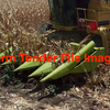 6 or 8 Row Corn Head/Front with 30 Inch Spacings