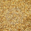 250mt Triticale Wanted Ex or Delivered - Grain & Seed