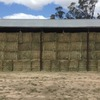 100mt Vetch Hay For Sale 8x4x3's good stock