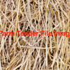 Rice Straw 8x4x3 Bales Treated with Hi Si - Hay