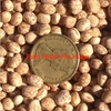 200mt Lupins for Sale Ex Farm or Del - Grain & Seed