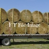 Cereal & Vetch Hay in Rolls For Sale