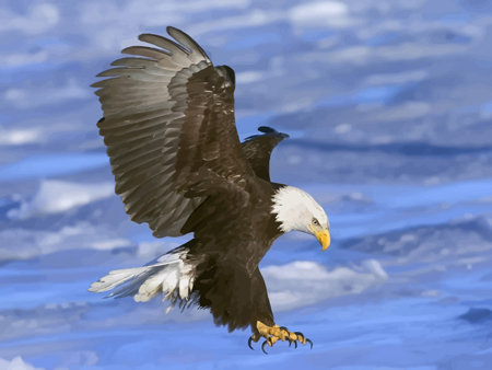 I'm thinking, drone for dinner tonight. Eagle in flight.