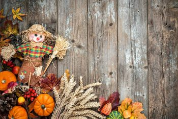 Cute Scarecrow courtesy of Google Images.
