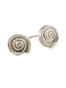 Queen Shell Earrings