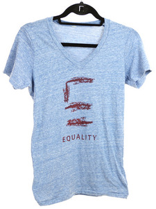 Equality Illinois Dash V Neck