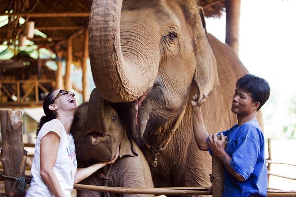 Anantara Elephants