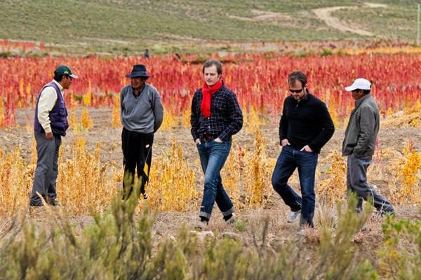 Quinoa farming
