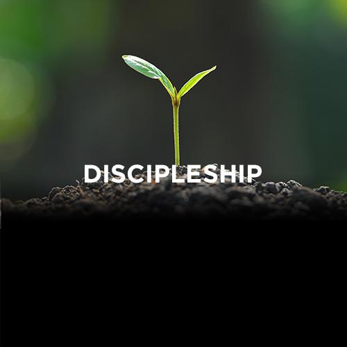 Free Chapel OC/Irvine - School of Discipleship