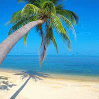 Maldives - Kuredu : 4 Star ex Johannesburg