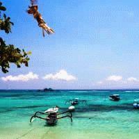 Topdeck : Bali Island Hopper - 7 Days