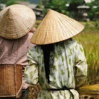Intrepid : Vietnam Express Southbound - 10 Days