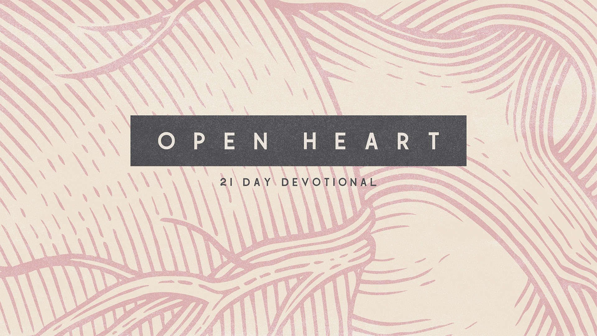 Ed Young Devotionals