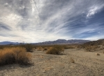 Mojave-desert_newsite