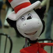 Cat In Da Hat
