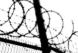 Barbed_wire_al