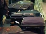 Baggage_pidgey
