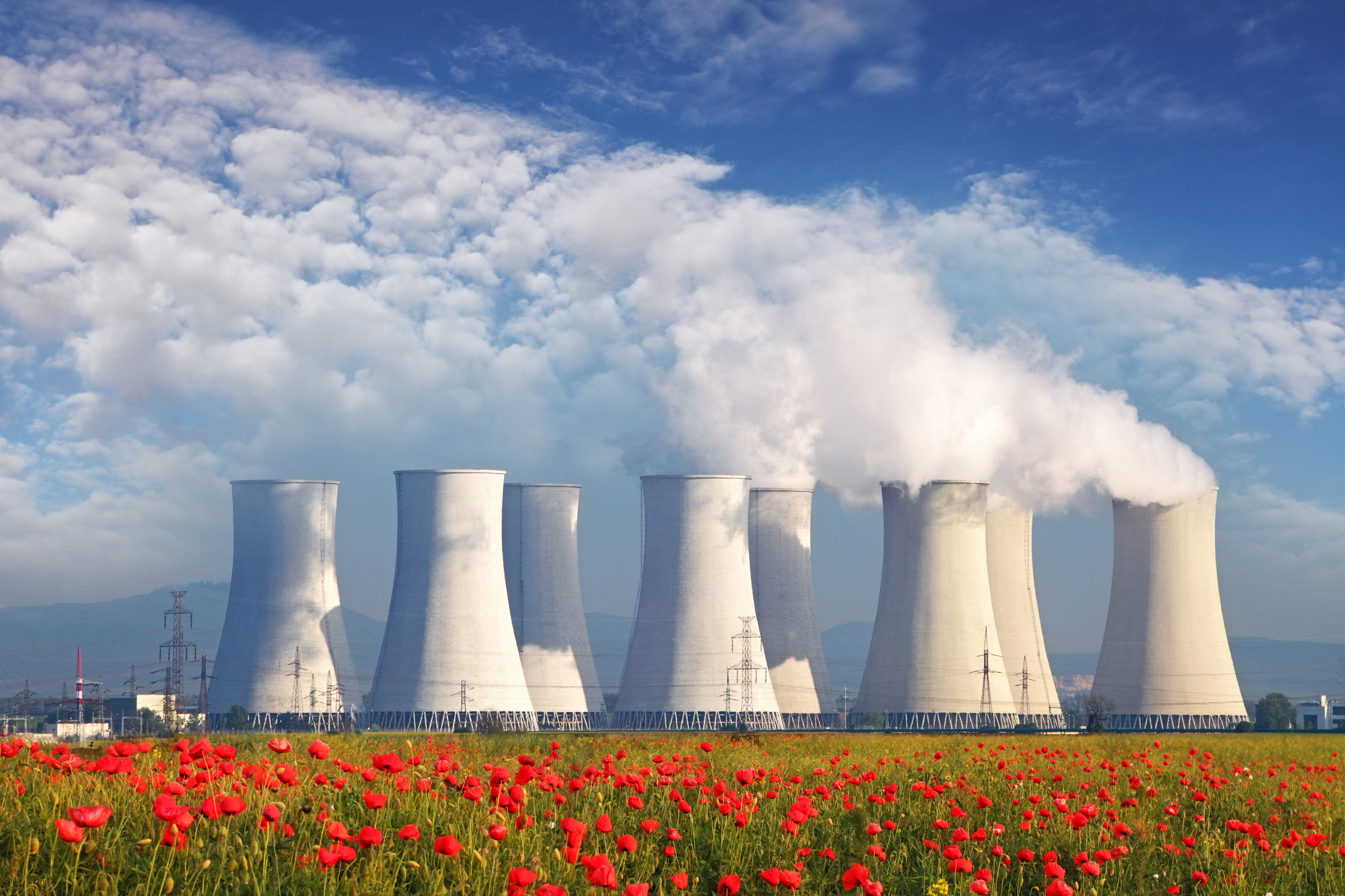 nuclear reactor research paper