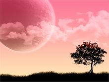Pink_twilight.full