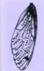 51pavkseyyl-sl110-jpg.small