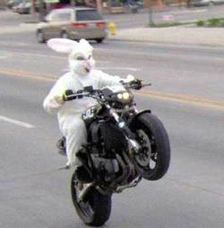 Easter-bunny-motorcycle.sidebar