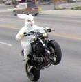 Easter-bunny-motorcycle.small