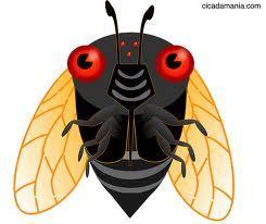 Locust.sidebar
