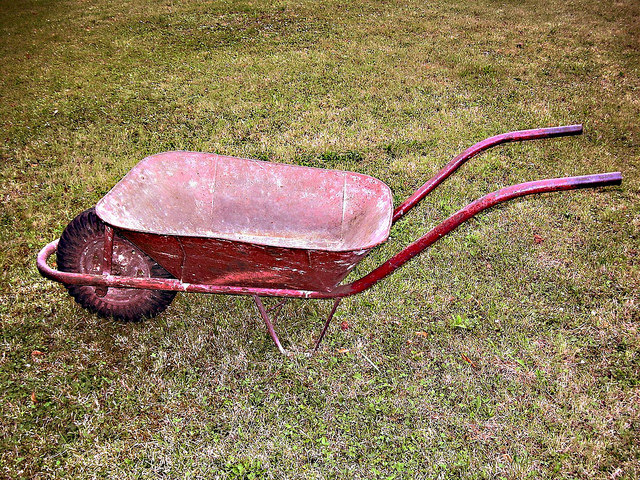 essays on the red wheelbarrow by william carlos williams William carlos williams' the red wheelbarrow is an imagist poem in which the speaker describes a rural scene with vivid sensory details and puts great importance upon the seemingly simple moment the article offers poetry criticism of the poem the red wheelbarrow, by william carlos williams it.