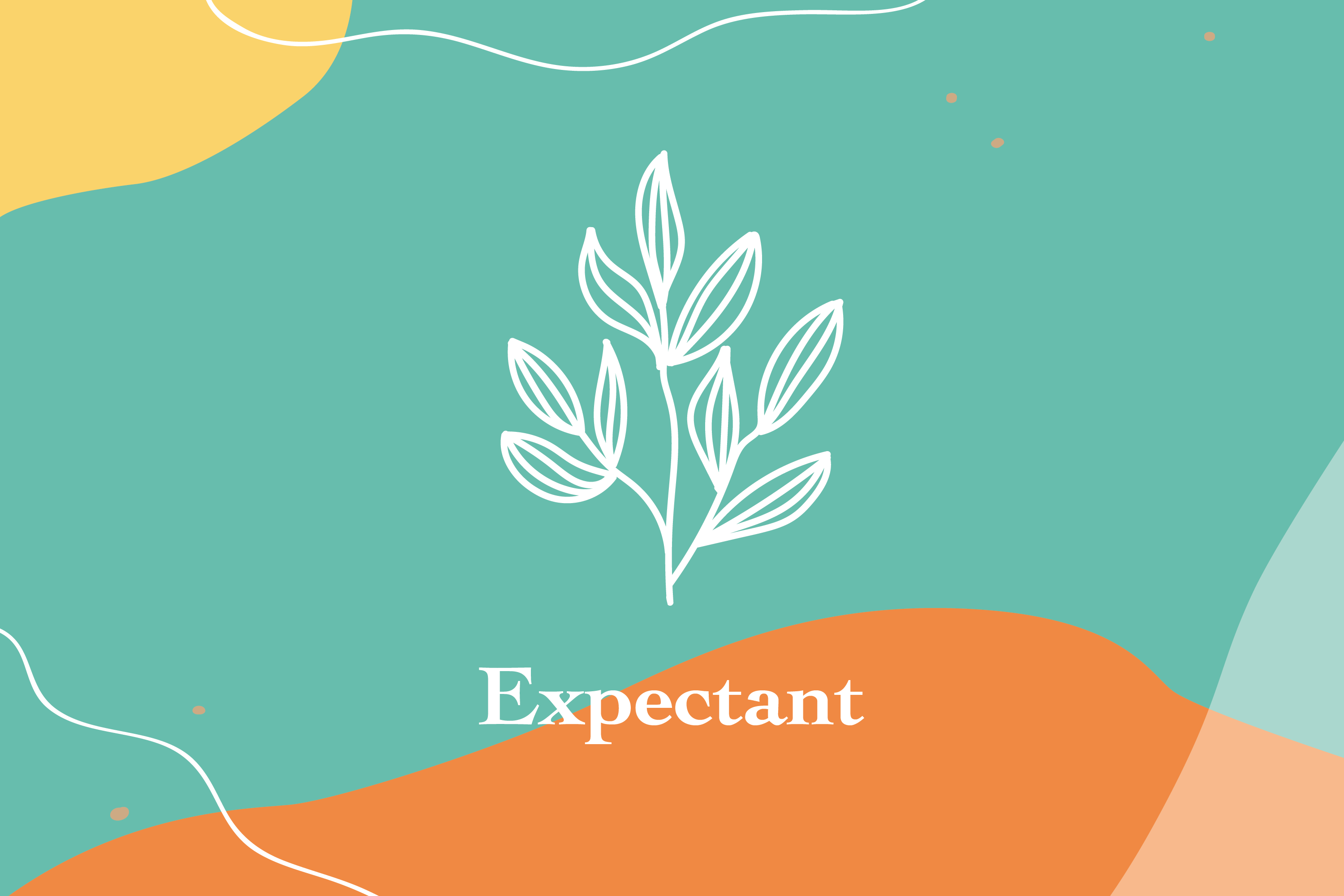 #076: Introducing Expectant
