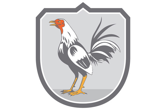 Cockerel Rooster Standing Shield Ret