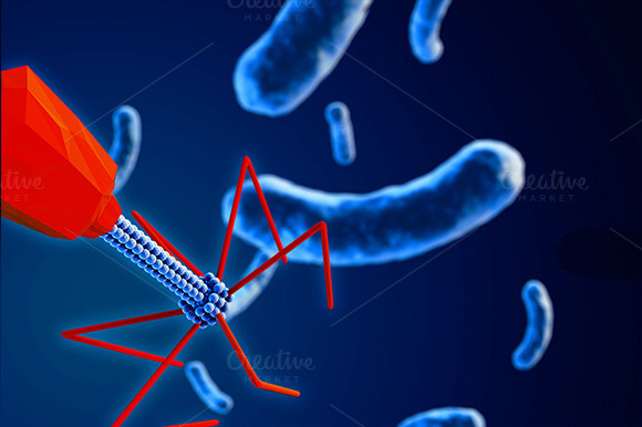 Bacteriophage Attacking Bacteria