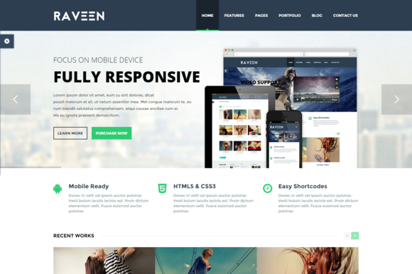 Raveen Bootstrap WordPress Theme