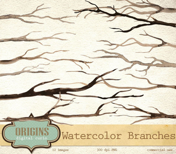 Watercolor Branches Clipart Set