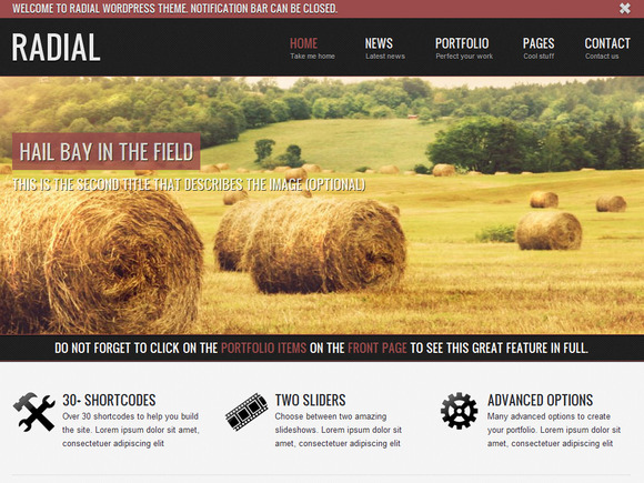 Radial Portfolio Website Template