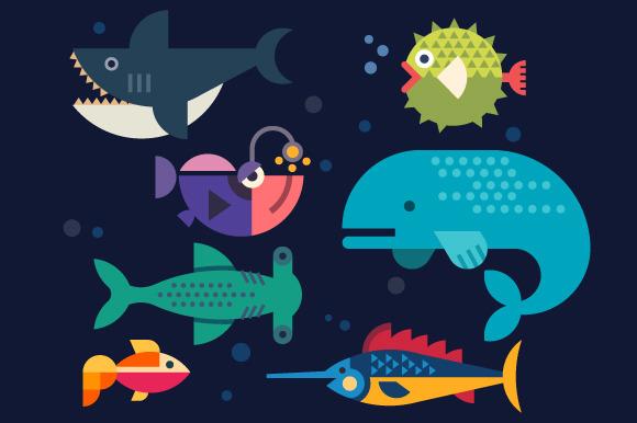 Sea Life Big Fish Whale Shark Sw
