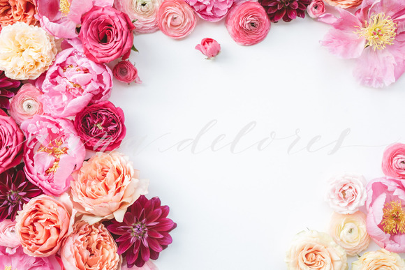 Styled Stock Photo Pink Flowers 1