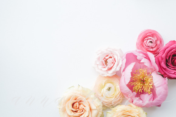 Styled Stock Photo Pink Flowers 2