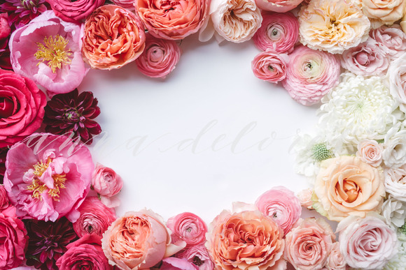 Styled Stock Photo Floral Frame