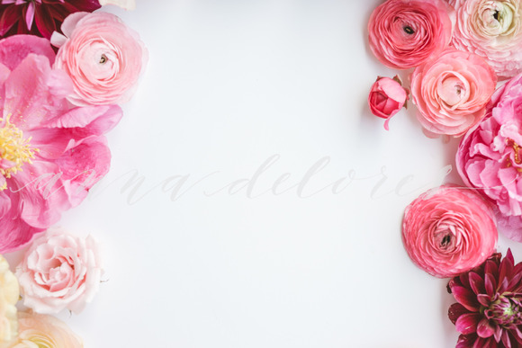 Styled Stock Photo Pink Flowers 4