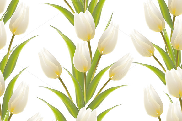 Tulip Floral Seamless Background