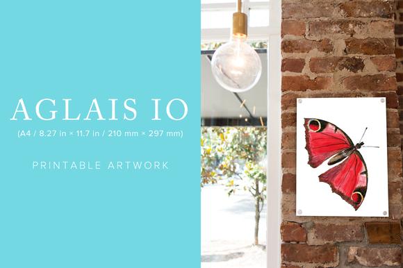 Aglais Io Printable Artwork