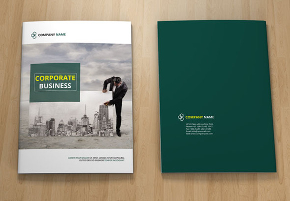 InDesign Corporate Brochure 12page