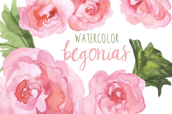 Watercolor Begonias Clip Art