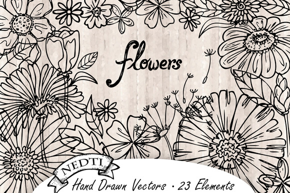 Flowers Hand Drawn Vector 5 Elements