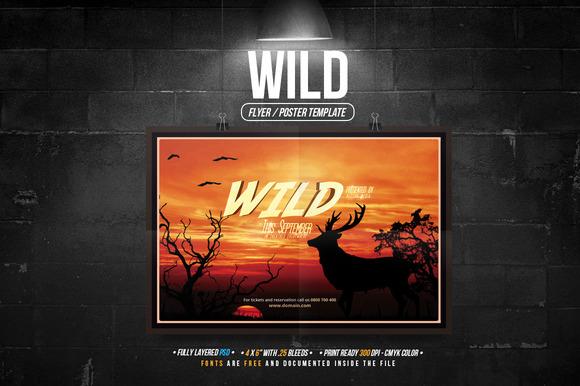 Wild Flyer