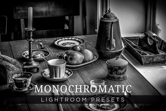 Monochromatic Lightroom Presets 1