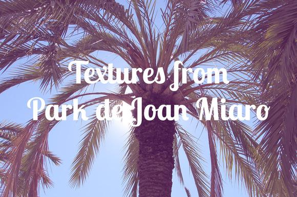 Textures From Park De Joan Miro