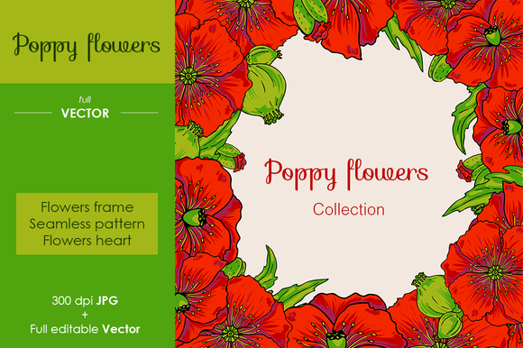Poppy Flowers Set Vector And Raster