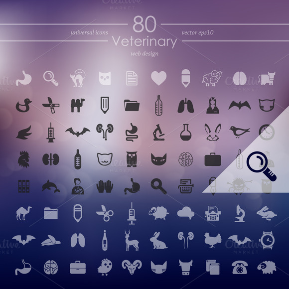 80 VETERINARY Icons